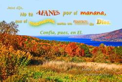 17445   Afanes por el Manana