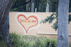 17408   Hand drawn heart with word Gratitude on wall