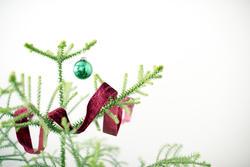 17287   Minimalist green pine Christmas tree with ribbon