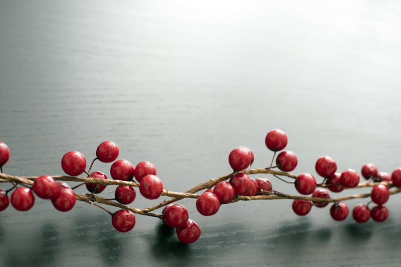 Close up view of small round red berries on vine lying atop black table with wood grain. Copy space.