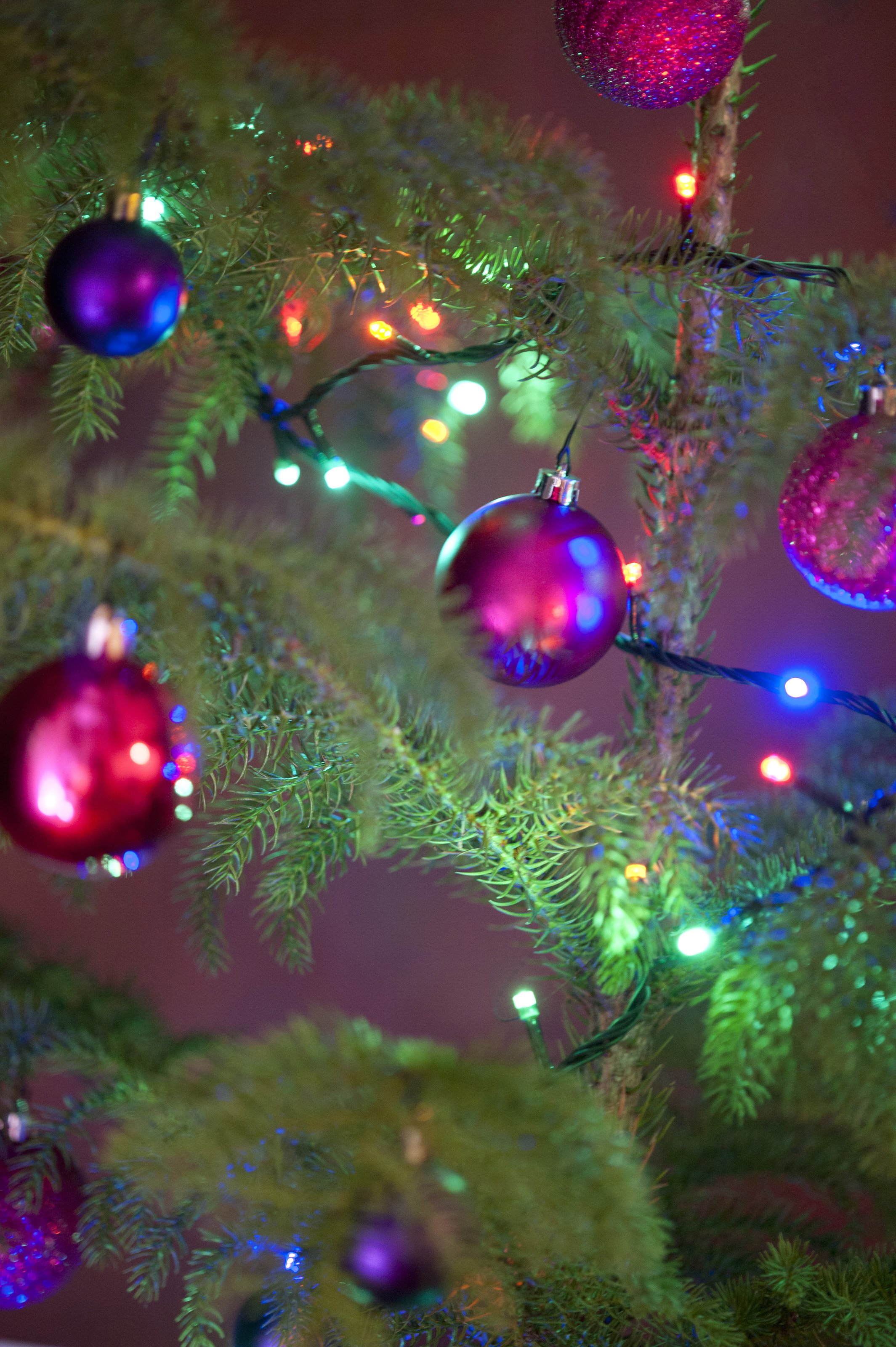 Free Stock Photo 11577 Colorful Christmas tree decorations ...