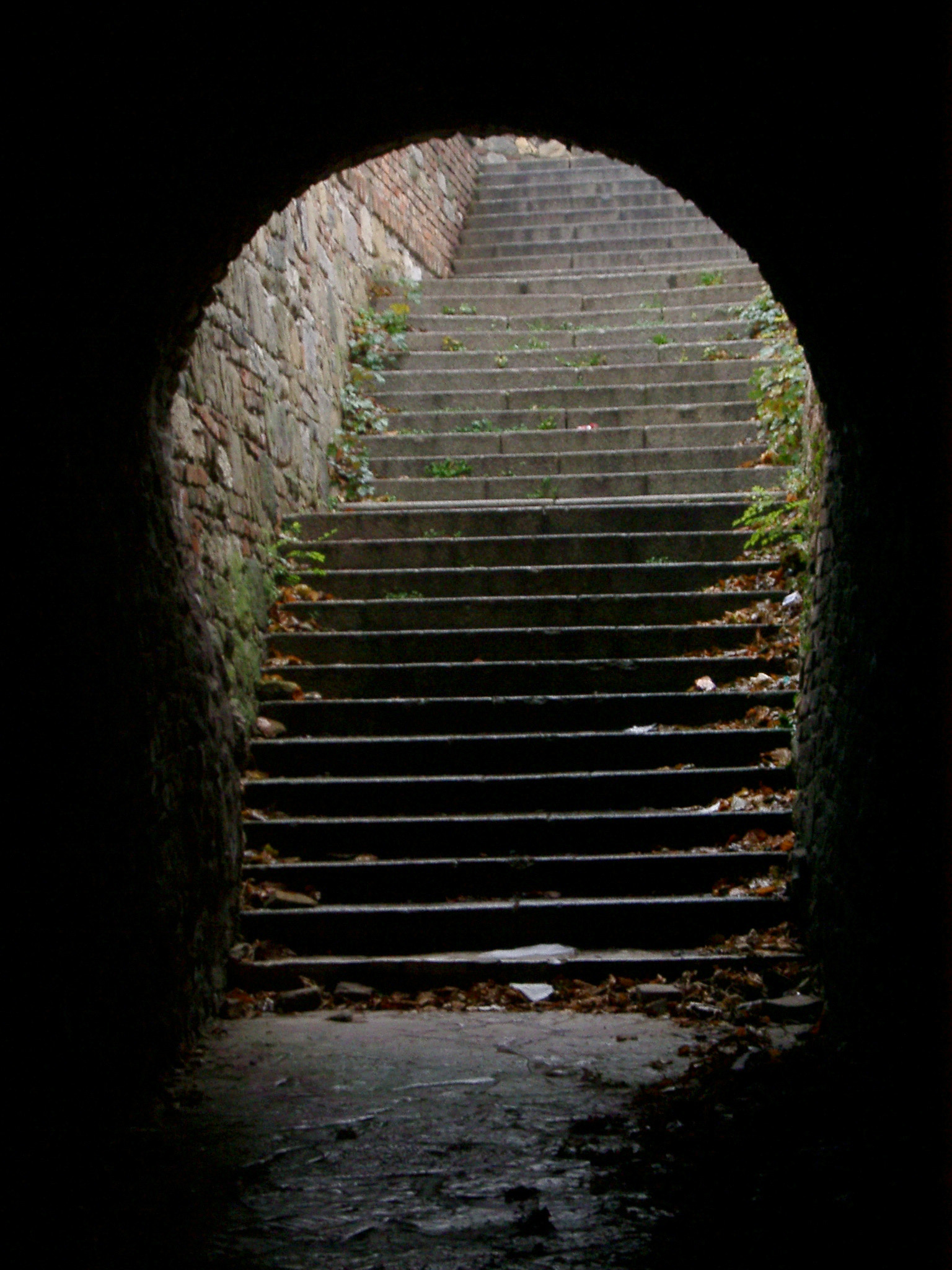Free Stock Photo 272-castle_steps_P1395.jpg   freeimageslive