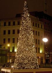 277-christmas cone
