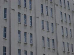 231-exterior_windows_2444.JPG
