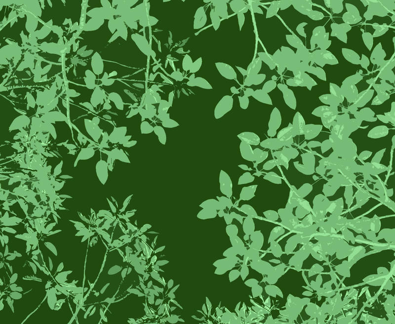 green illustration of a canopy of tree leaves