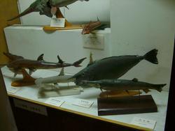 351-museum_exhibit_4878.JPG
