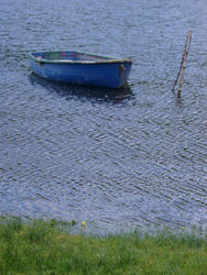 379-rowing_boat_3179.jpg