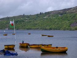 381-rowing_boat_lake_3170.JPG
