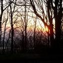 88-sunset_trees_2407.JPG