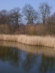 127-winter_lake_2465.jpg