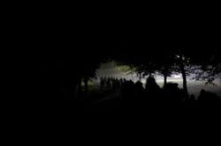 1078-a_walk_in_the_dark_3389.JPG