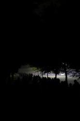 1079-a_walk_in_the_dark_3391.JPG
