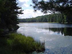 694-Algonquin Provincial Park