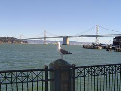 954-bay_bridge_01884.JPG