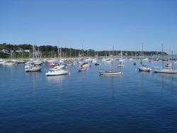 725-boats in the harbour