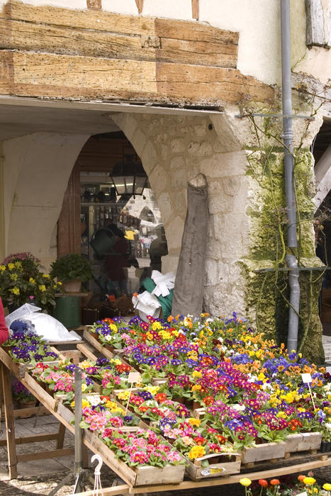 a traditional flower seller in a french village market place