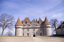 1180-french_chateau_1903.jpg