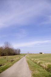 1160-french_fields_1748.jpg