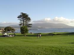 841-golf_course_02130.JPG