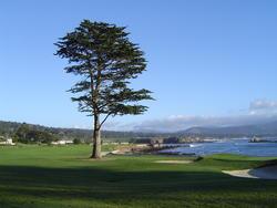 842-golf_course_02132.JPG