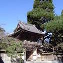 990-japanese_tea_gardens02179.JPG
