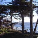 918-monterey_coast_02116.JPG