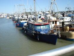 1408-Docked_Fishing_Boats.JPG