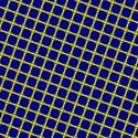 1658-blue and yellow mesh
