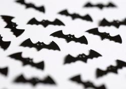 1439   halloween bats