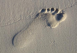1788     Footprint in the Sand