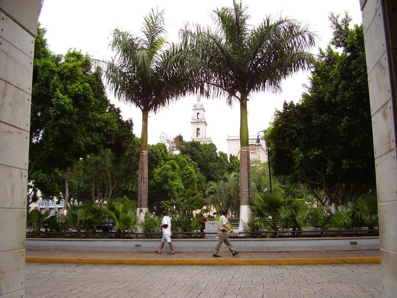 Central Merida, known as the white city due to its limestone construction