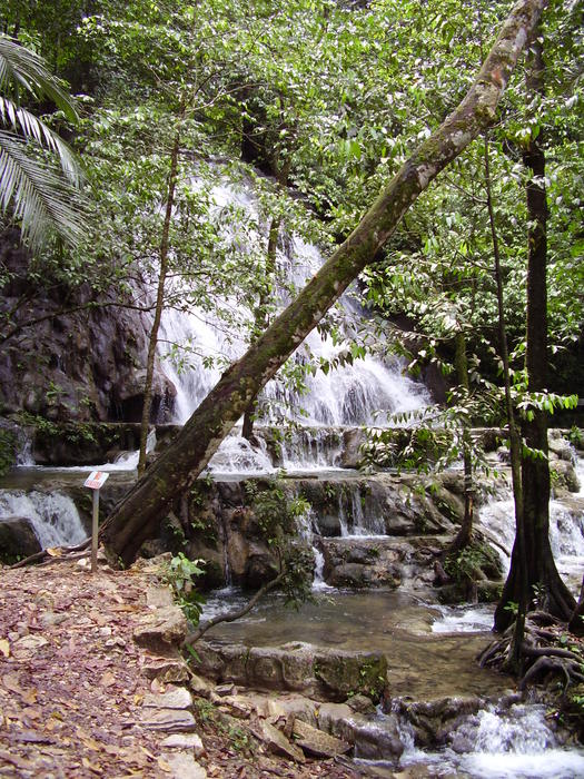 a waterfall in the central american rainforest