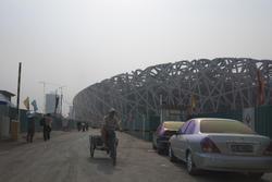 2491-birdsnest stadium construction