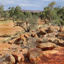 2906-dry todd river
