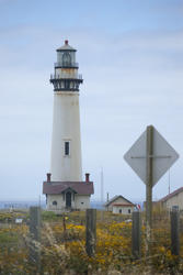 2631-pigeon point lighthouse