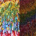 2757-rainbow gammut