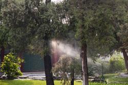 2486-water sprinkler