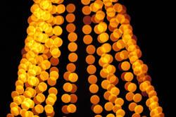 2863-strings of lights