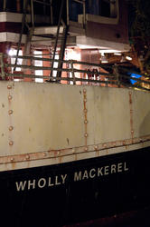 2645-wholly mackerel