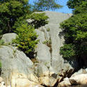3779-Rock Ledge