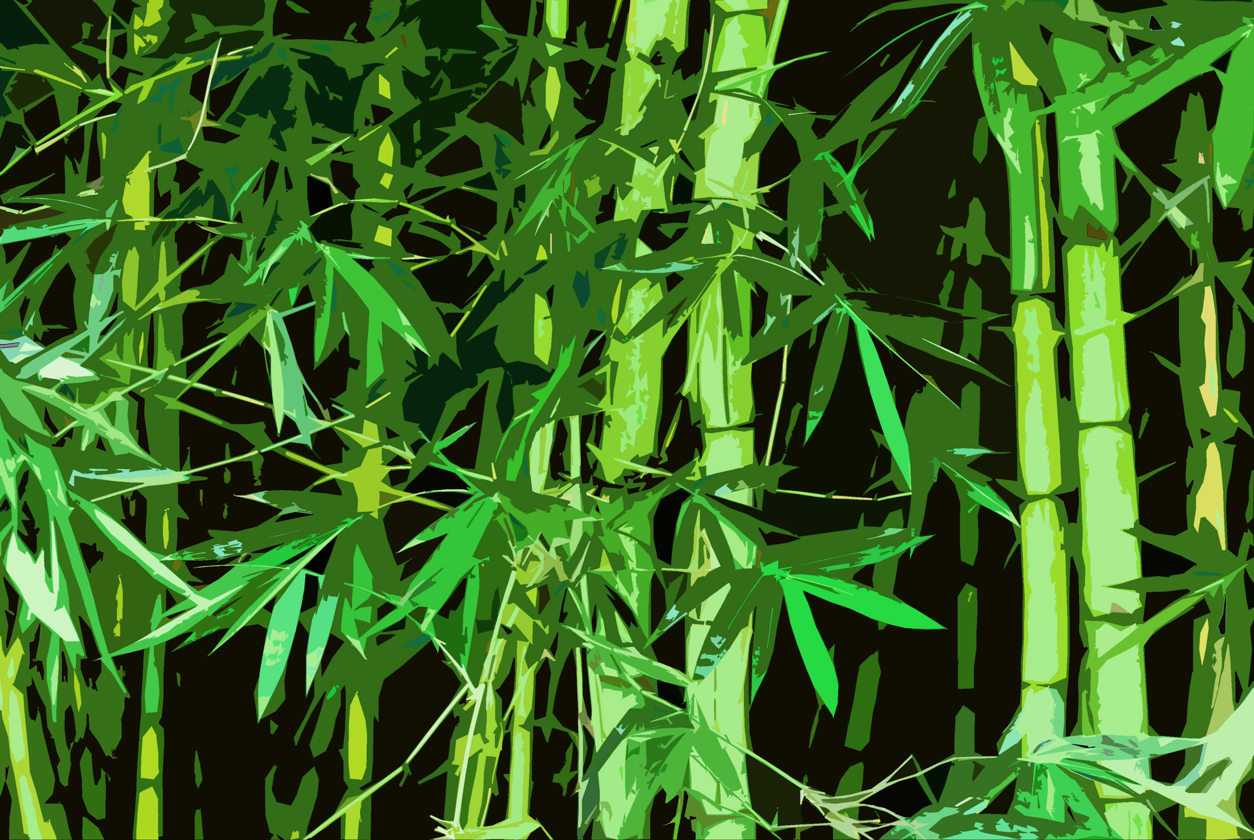 Free Stock Photo 3003 Graphic Bamboo Freeimageslive