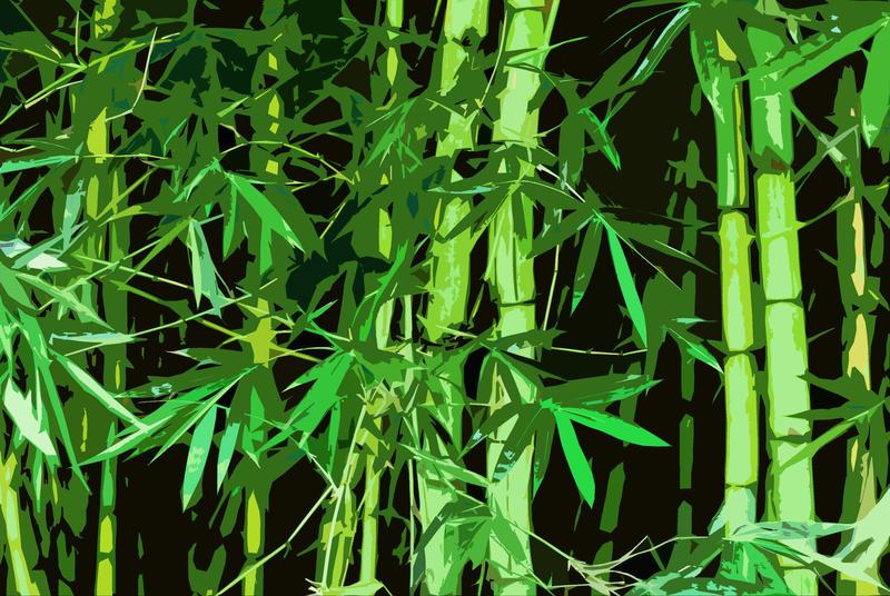 3003-graphic bamboo