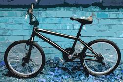 3294-bmx bike