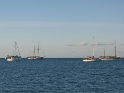 3401-various sailboats