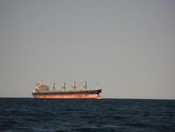 3310-bulk cago ship