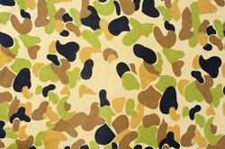 3901-camouflage pattern