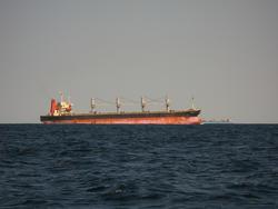 3311-bulk carrier