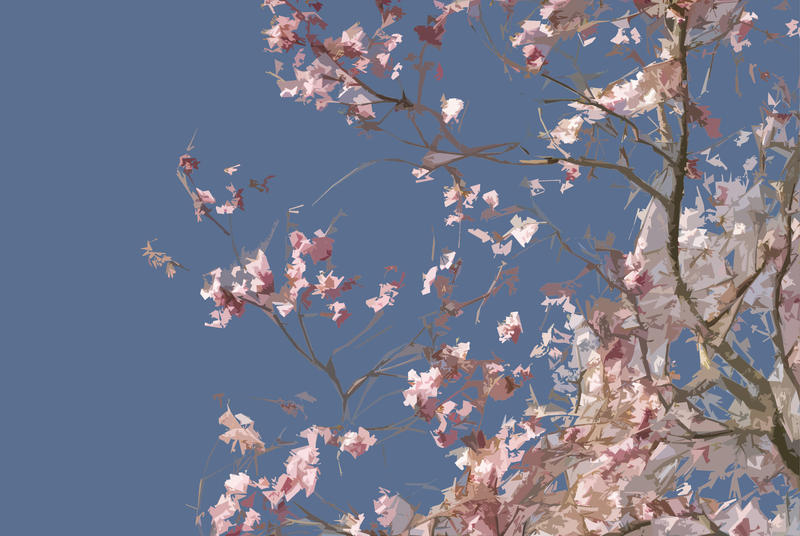 3004-graphic cherry blossom