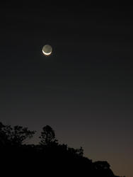 3381-crescent moon