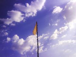 3863-flag.jpg